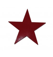 Logo 'Roter Stern'