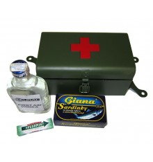 First aid box green with red cross